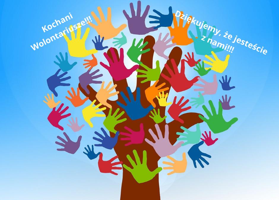 5 grudnia Międzynarodowy Dzień Wolontariusza!!!